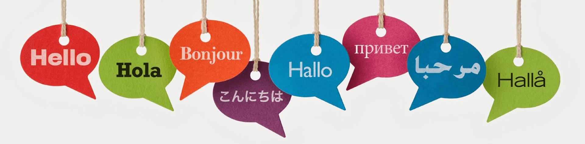 Մասնագիտացված թարգմանություն